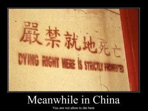 Meanwhile-in-China_o_106548